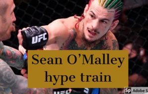Sean O'Malley hype train