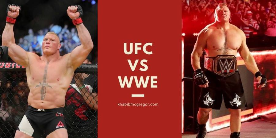 Which is better UFC or WWE